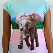 Elefantefrente_DSF0019_1