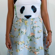 Pandafrente_DSF0028_1